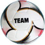 Futball labda  Team No. 5